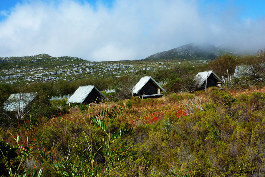 Table Mountain Hoerikwaggo Trail Silvermine tented Camp