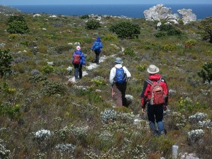 Cape of Good Hope trail