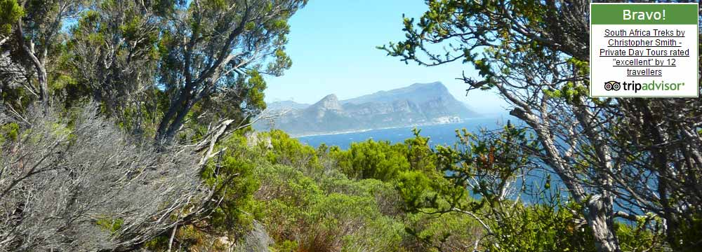 South Africa Guided treks Cape Point